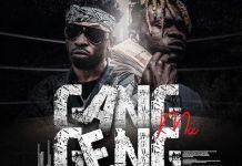 DJ Baddo Gang Geng Mix - DJ Baddo Trending Mix 2020