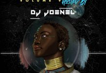 dj joenel afrobeatz fever vol 9 mix