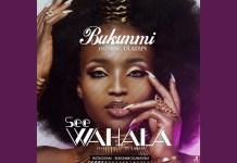 Best Of Bukunmi Oluwashina DJ Mix Mixtape - Bukunmi Oluwasina Songs Mixtape Audio Download