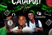 DJ Peace Catapult Mix - DJ Afro Mix Songs Download