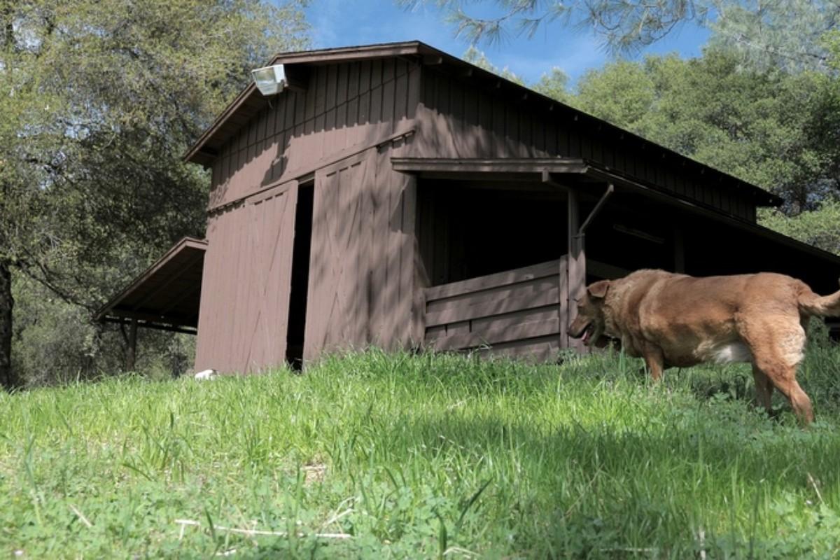 Yosemite Getaways  glampinghubcom