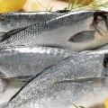 Ebadjea recette de poisson à la camerounaise frais djolo
