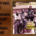 L'instant Vinyle N.T.U Small Tigers Musukungibulala