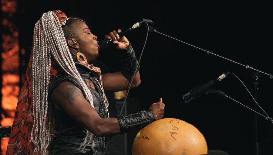 Dobet Gnahoré, Festival de Hammamet, FIH, musique ivoirienne