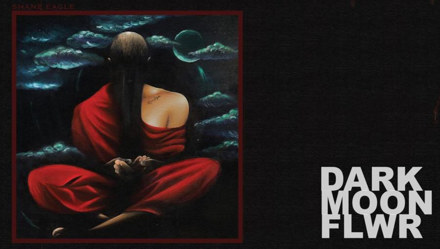 Dark moon Flower, Dark moon Flwr, Shane Eagle, hip-hop, hip hop sud africain, Nasty C, mixtape, Bas, Santi, rap