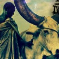 The Seeds of Datura, black metal, metal, metal africain, acid metal, folk metal, metal kenyan, limuru, nouvel album