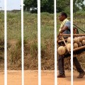 Sordi, Ba-ere Yotere, Kakraba Lobi, Lobi, Sauru, Ghana, peuple du ghana, gyil, balafon, vibraphone, nouvel album, musique ethnique, Lobi du ghana