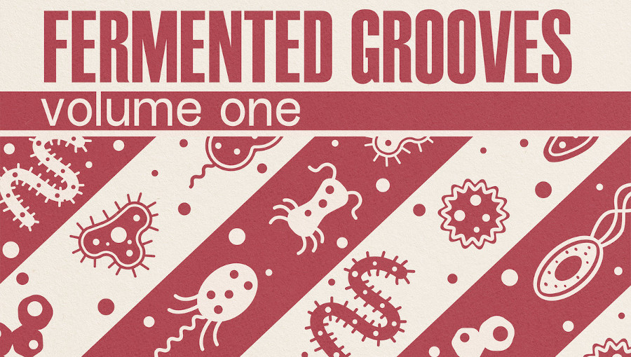 Fermented Grooves volume one, Fermented grovves, Stereo Ferment, Ontario, remix, rework, grooves, afrobeat, turkish, bollywood, boogie, edits
