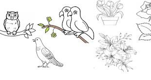 Gambar flora dan fauna yang mudah untuk di gambar