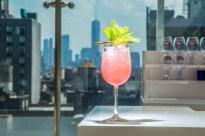 Haydens-Rooftop_Cocktails-2-753x502