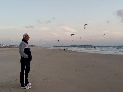 Beach is decorated with kites