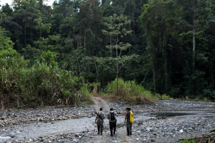 Mauricio, Filander (rangers), Reporter (danielle) walking in national park © James Sherwood - Bluebottle Films