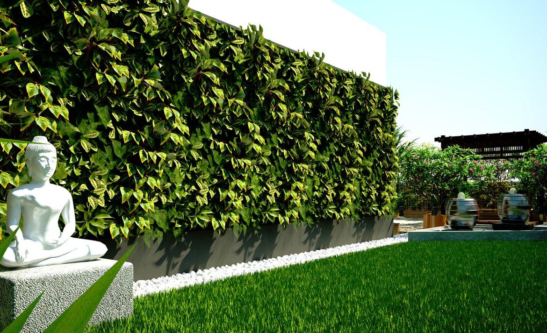 Zen Garden with Evergreen Foliage Terrace Garden  MyCloudForest Banglore