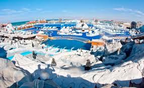 """""""Islandijos"""" vandens pramogų parkas"""