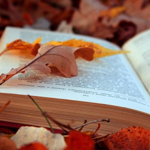 Image result for fall library