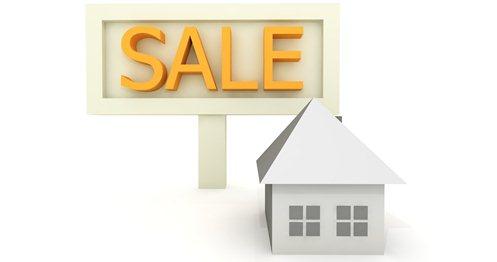 Website on Sale at Flippa