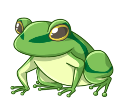 p355_frog