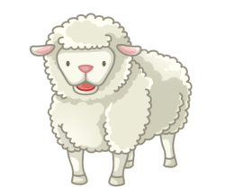 p361_Sheep