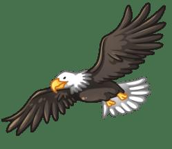 p383_eagle