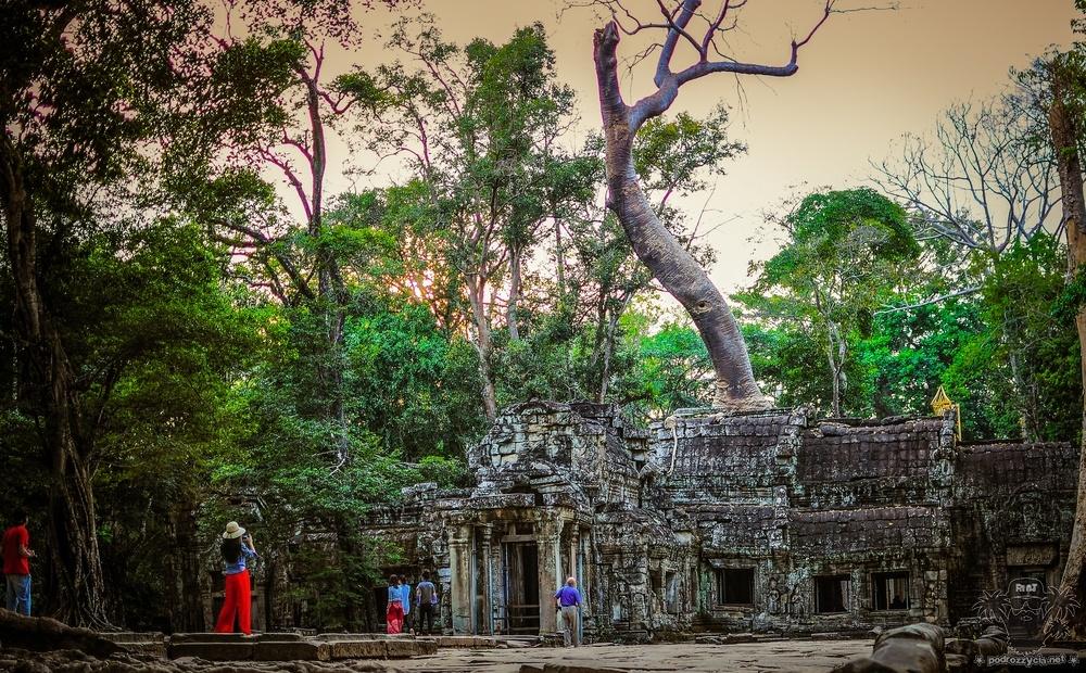 Round The half World, Kambodża, Ta Prohm