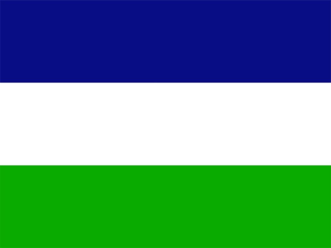 Bandera Patagonia
