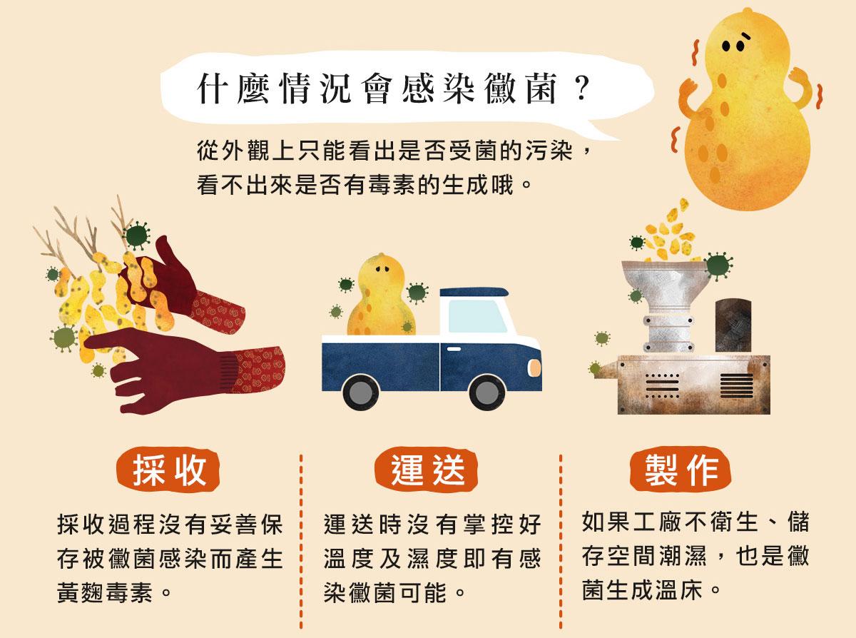 什麼情況會感染黴菌?從外觀上只能看出是否受菌的污染,看不出來是否有毒素的生成哦。不管是採收、運送、製作、購買後的存放,都必須保存於乾燥乾淨的空間。而且不只有花生,醃漬類、乾貨、米、豆類、五穀雜糧甚至是醬油,若保存不良都可能含有黃麴毒素哦。