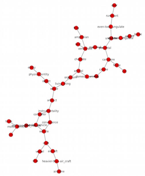Visualizing CIFAR-10 Categories with WordNet and NetworkX
