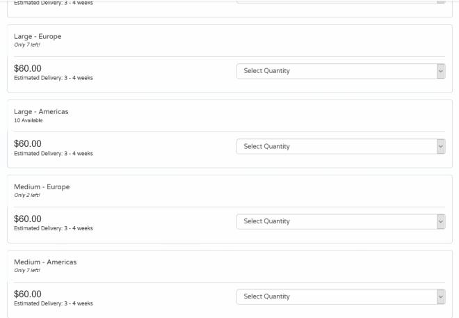 Screenshot of donation form.