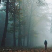 boy in hood walking down foggy lane.