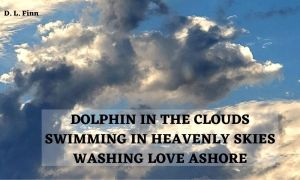 dolphin in the clouds swimming in heavenly skies washing love ashore