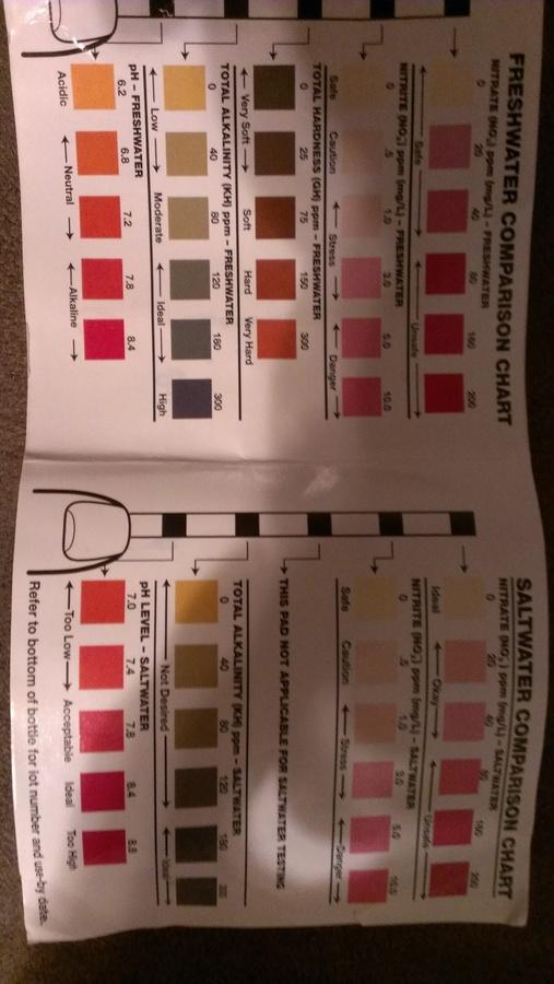 Tetra Easy Strips Color Chart : tetra, strips, color, chart, Where, Color, Chart, Jungle, Brand, Strips, Aquarium