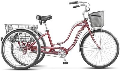 Veloaksessuary gruzovoi velosiped