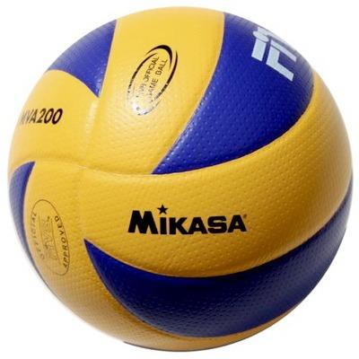 Voleibolnyi miach professionalnyi