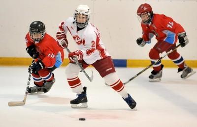 Хоккей с шайбой. Правила и особенности. Снаряжение и оборудование