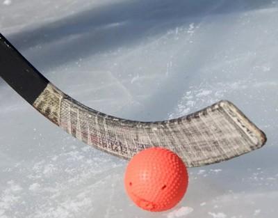 Клюшка для хоккея с мячом. Виды и устройство. Как выбрать