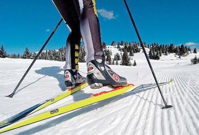 Беговые лыжи. Виды и особенности. Как выбрать и применение