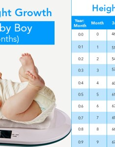 also weight and height growth chart for baby boy to months rh babydestination