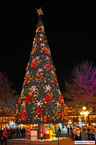 Tree Lighting Ceremony, Ice Palace in pictures