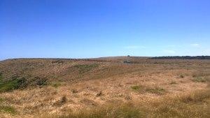 Phillip Island coastal track.