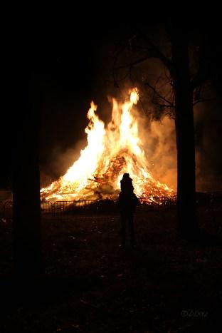 Falisolle grand feu (2)