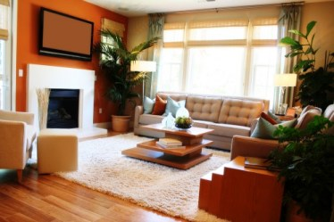 without furniture wall trulia