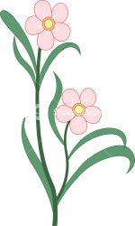 Natural Flower Clipart Royalty Free Stock Image Storyblocks