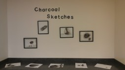 Charcoal sketches on paper