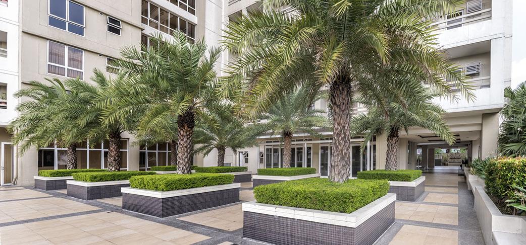 illumina-residences-manila-Tree Court-large