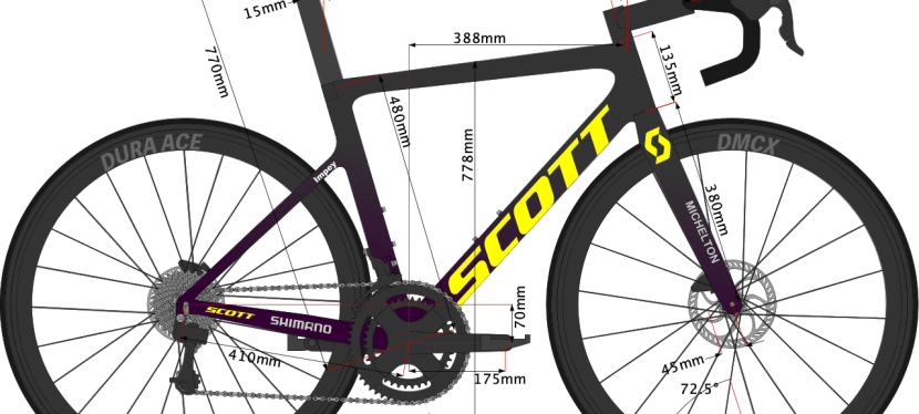 Daryl Impey's 2020 Bike size