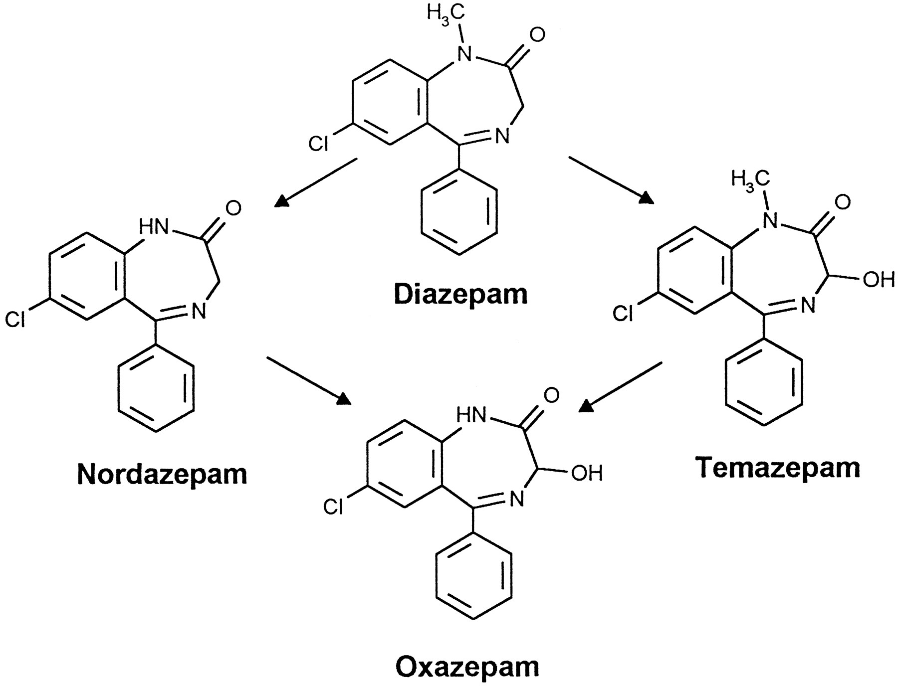 Diazepam Metabolism By Cdna Expressed Human 2c P450s