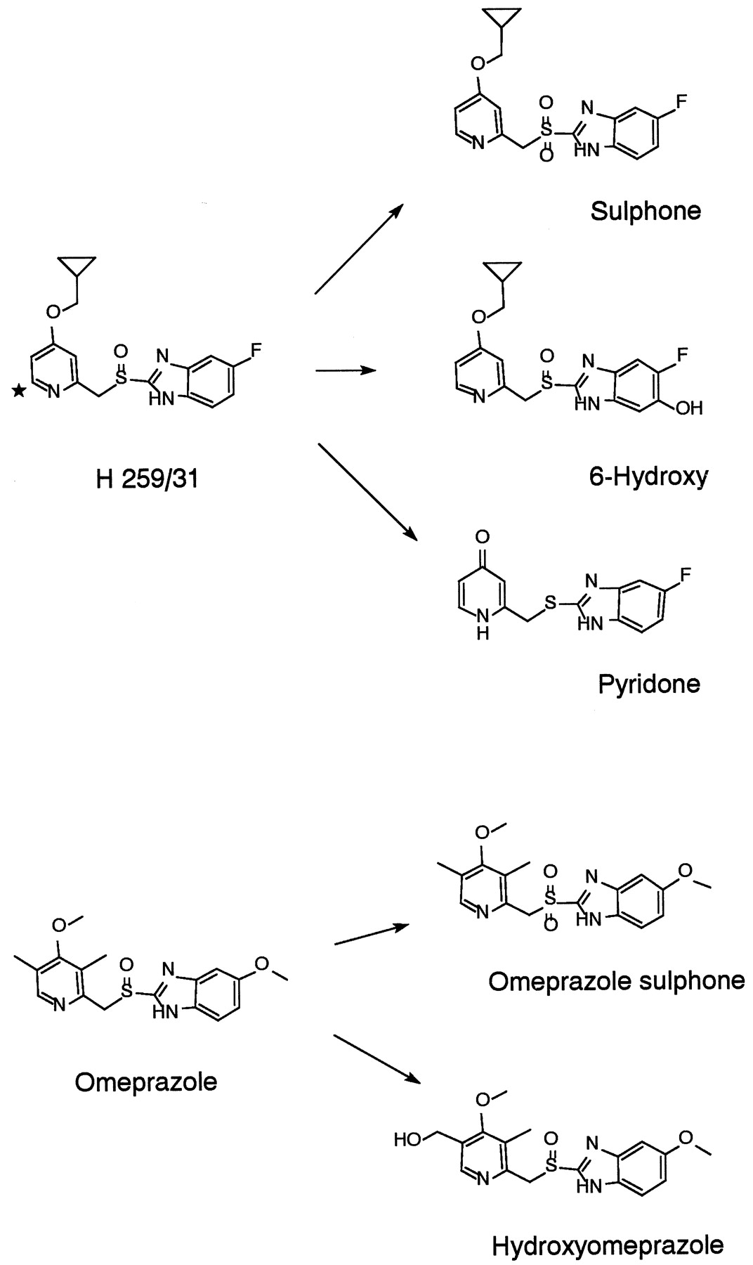 Stereoselective Metabolism by Human Liver CYP Enzymes of A