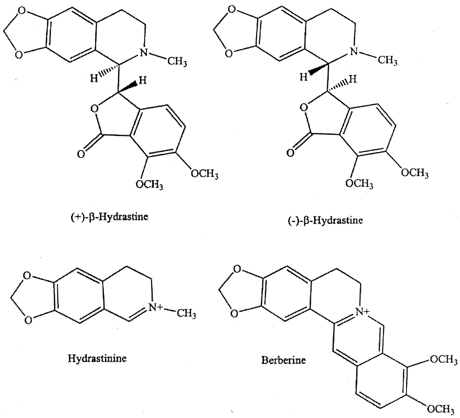 HUMAN CYTOCHROME P450 INHIBITION AND METABOLIC