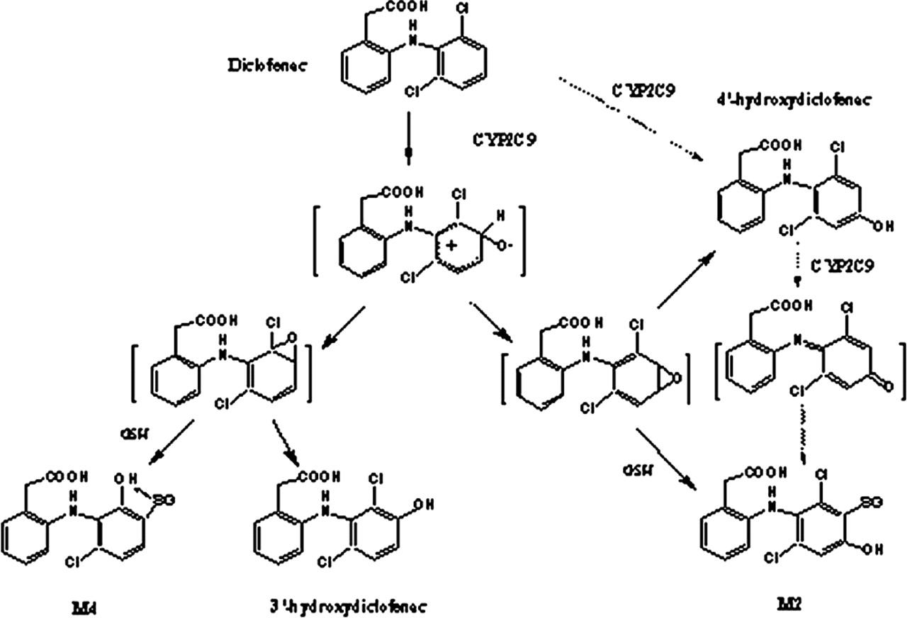 tamoxifen 20 mg nedir