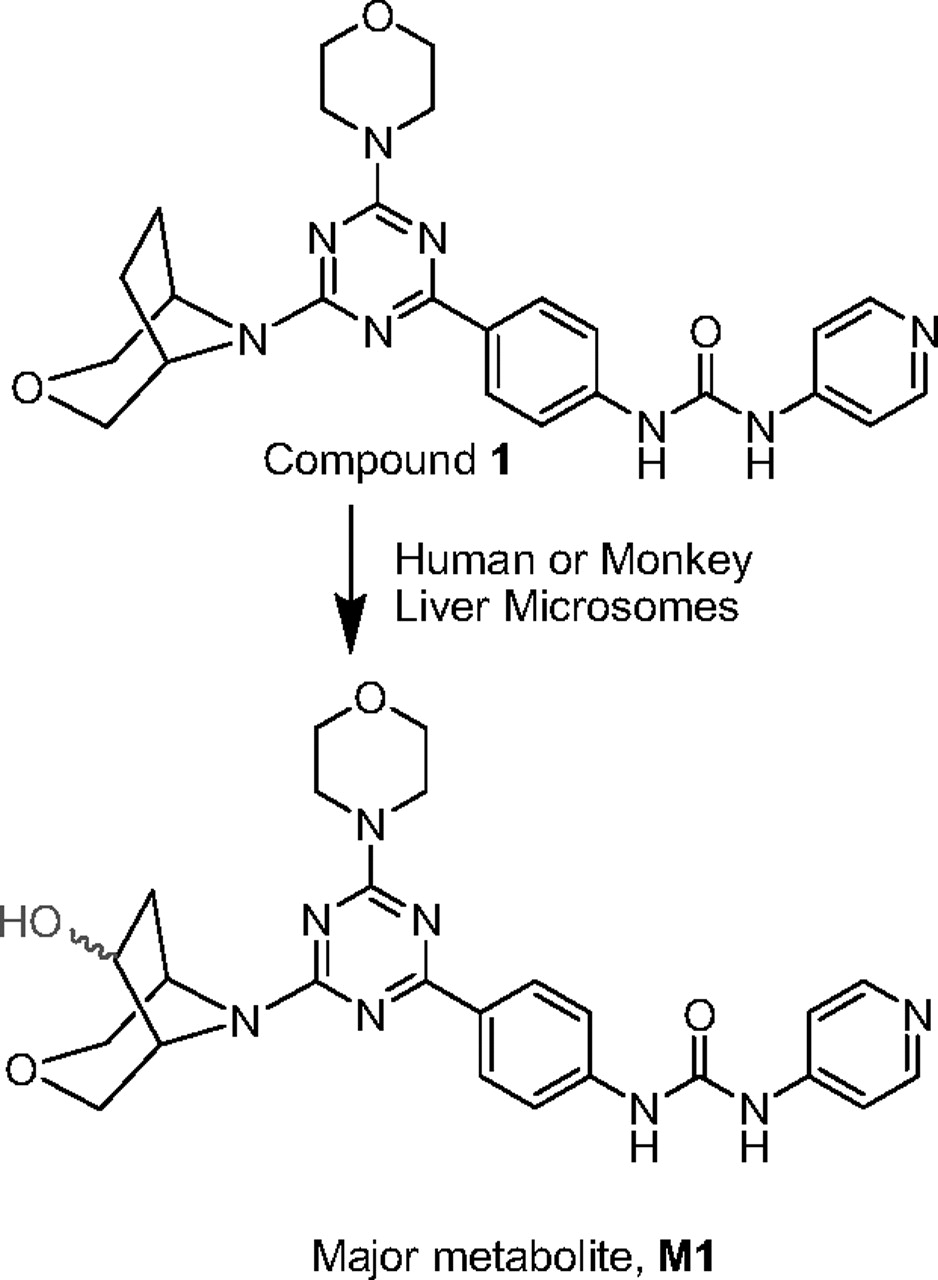 Application of Quantitative NMR in Pharmacological